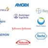 CRAの転職:ここ最近、製薬メーカーは自社のCRA数を増やしているぞ!